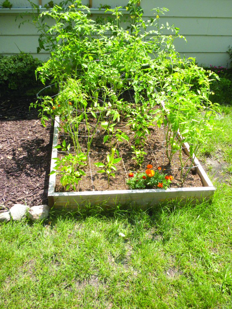 Square Foot Gardening For The Space Deprived Home Remodeling Fair